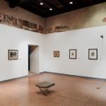 Museo Morandi - Bruno Bani