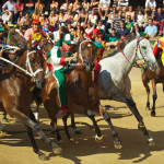 Il Palio di Siena - Janus Kinase