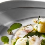 Lukewarm carpaccio of sea bass with lime purèe and rocket sauce