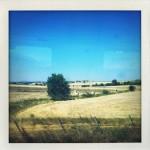 In viaggio per Roma - Paola Sucato