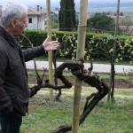 Primo Franco at Nino Franco vineyards - Photo from website