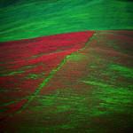 Sicilia - John Heseltine