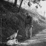 Toscana - John Heseltine