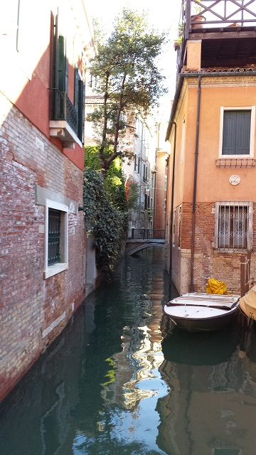 Serenely beautiful...Venezia Photo by Raleigh Hussung