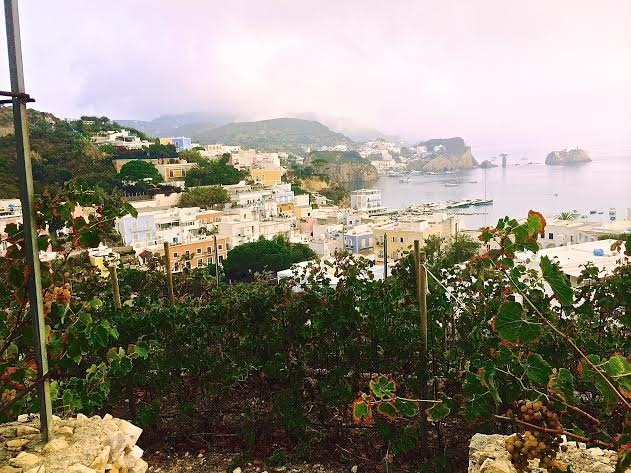 Ponza - Photo by Susan Nelson