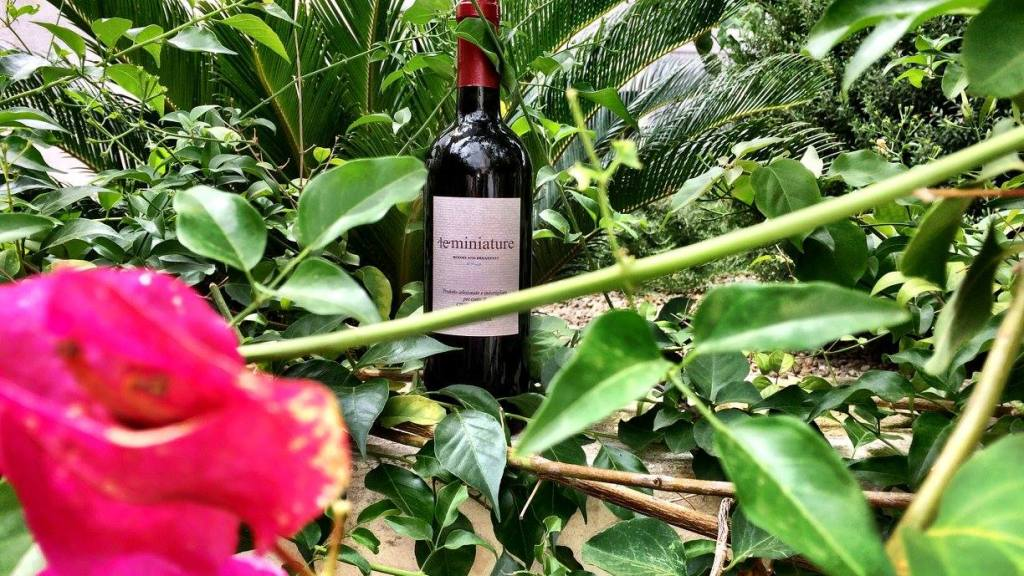 Bottle of wine at Le Miniature Photo by  https://www.instagram.com/buona.forchetta/