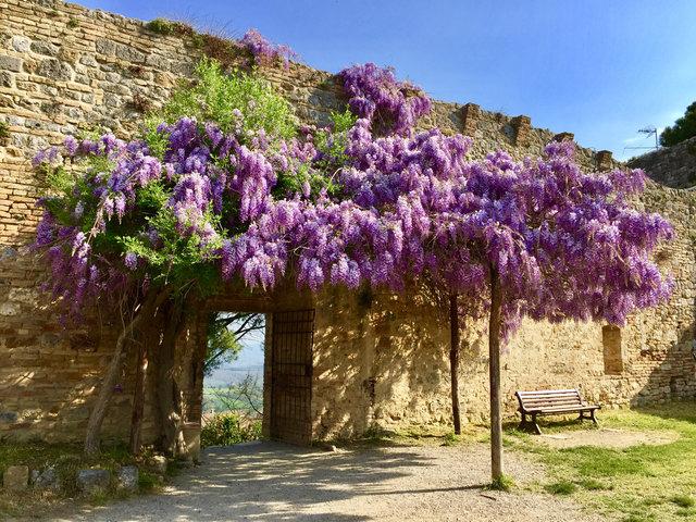 San Gimignano pointsandtravel photo