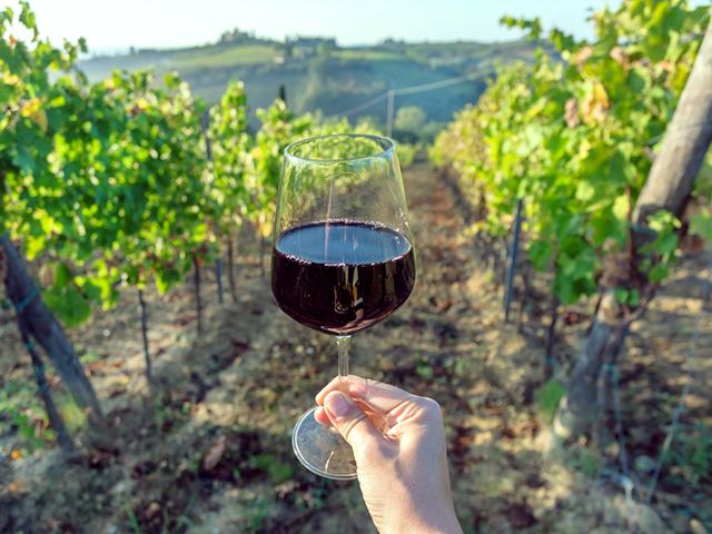 Degustazione vini in Toscana