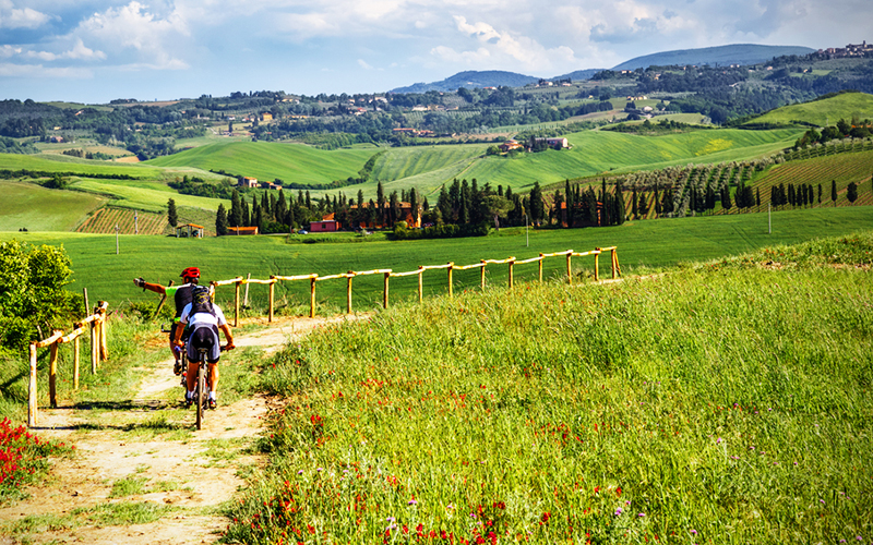 Wine_bike_tour_800x500