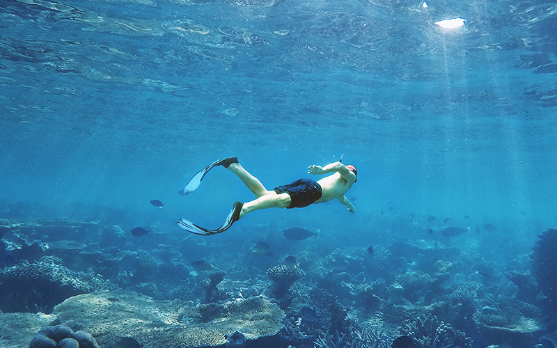 Diving_experiences_Maldives